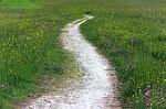 Sa'diyya path