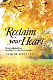 Reclaim Your Heart Cover